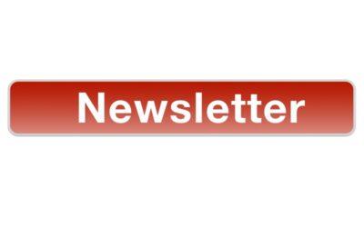 Newsletter – Autumn 2020
